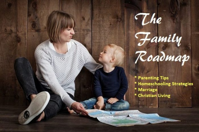 Family Roadmap Blog Header